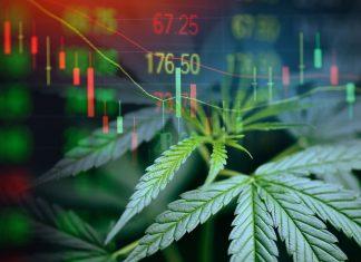 Business cannabis marijuana stock exchange market graph business