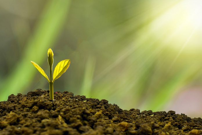 investimenti green economy